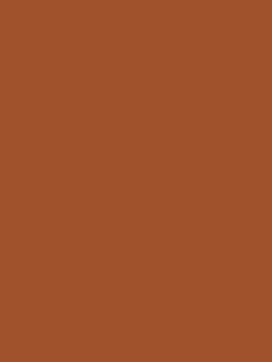 Color 122 Sienna