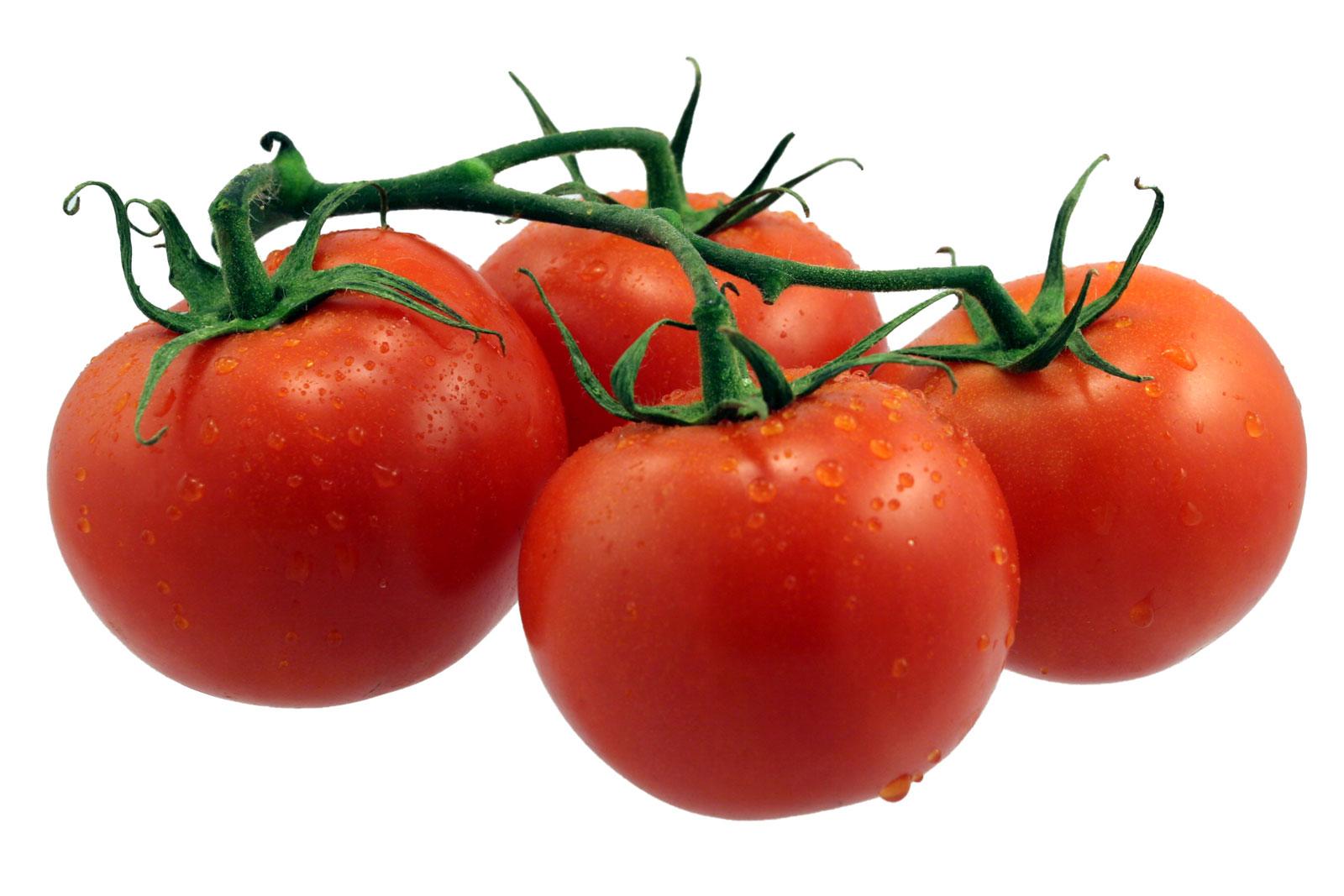 133 tomato html hex fo...