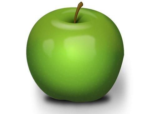 Fruit Vegetables Grain Fruits Vegetables Nuts