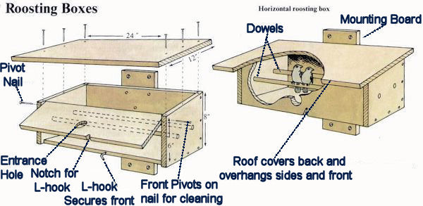 Woodwork Blue bird roosting box plans Plans PDF Download Free    bird roosting house plans
