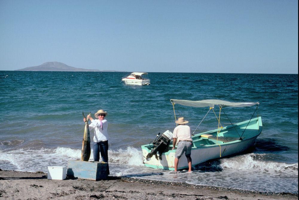 Nolls fly to loreto baja california mexico for Baja california fishing