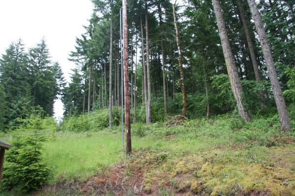 Douglas Tree Property Service